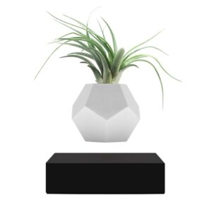 Левитирующий вазон «LYFE Planter», черный - Фото